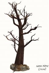 arbreséculaire